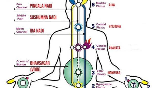 what-is-the-physiology-of-kundalini-and-chakras-and-how-kundalini-became-synonyms-with-supreme-consciousness