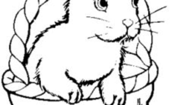 bunny-coloring-pages