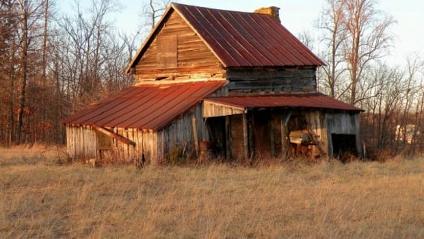 the-diversity-of-old-barns