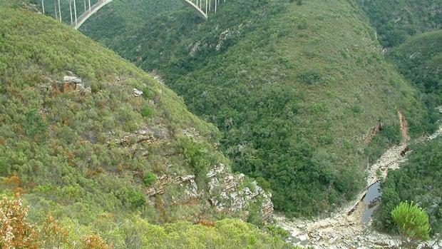 the-bridge-of-death