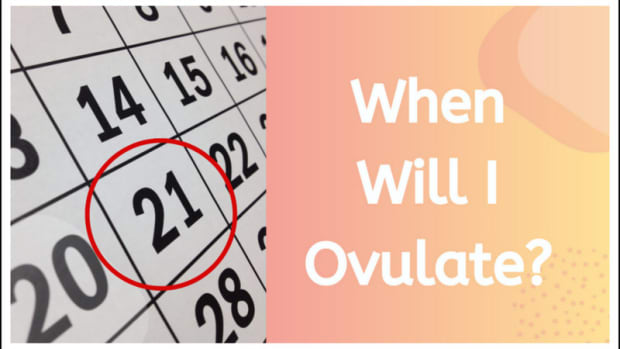 when-will-i-ovulate