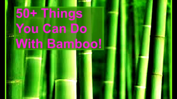 50-things-you-can-do-with-bamboo