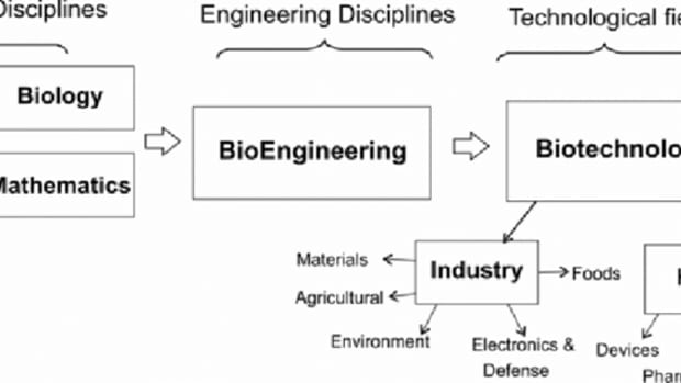 biochemical-engineering-introduction-history-scope-and-applications