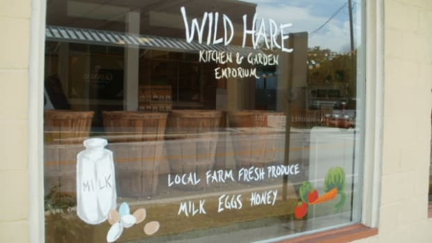 farm-to-table-a-wild-hare-expedition