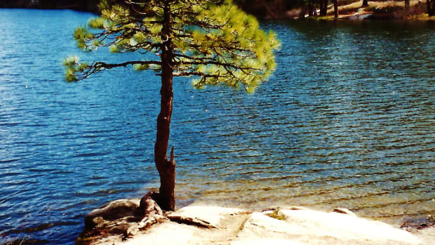 hume-lake-sequoia-national-park-pictures-of-delightful-discovery