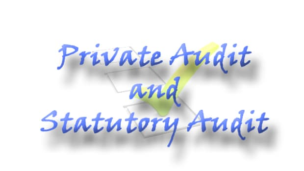private-audit-and-statutory-audit