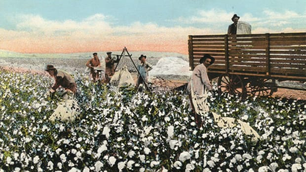 cotton-farming-in-arizona-past-and-present