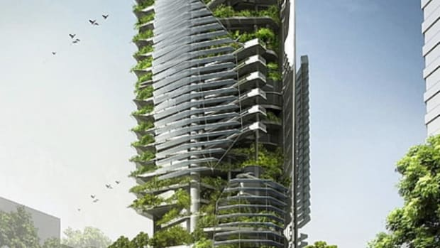 vertical-farming-feeding-our-future