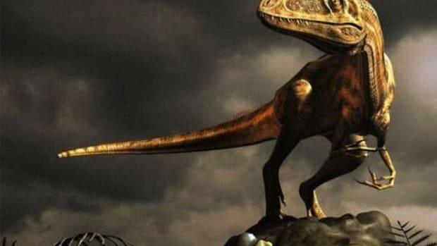 biggest-carnivore-dinosaurs
