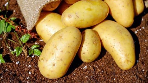 eat-raw-potatoes-for-many-health-benefits