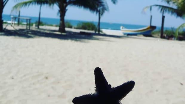 things-to-do-at-tarkarli-beach