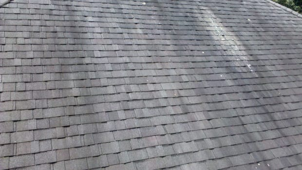 how-to-remove-algae-from-roof-shingles
