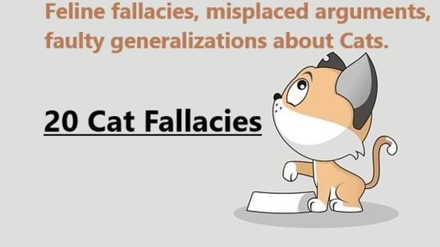 common-cat-fallacies