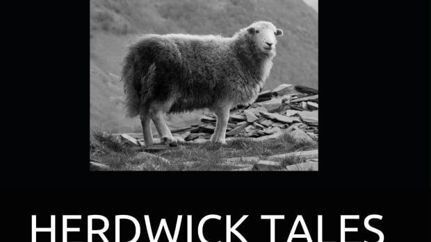 herdwick-tales