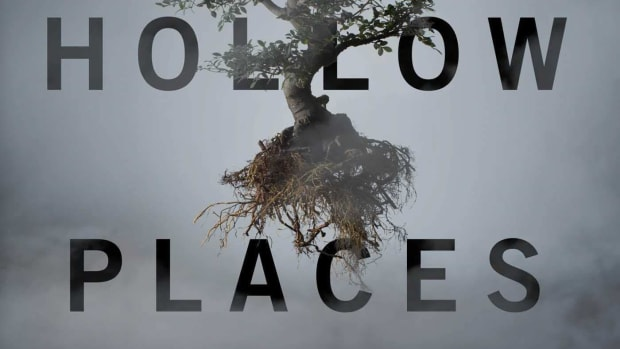 a-book-review-of-the-hollow-places-by-t-kingfisher