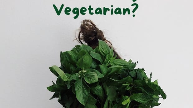 the-pros-and-cons-of-vegetarianism