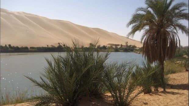 how-long-can-human-survive-in-the-desert-without-water