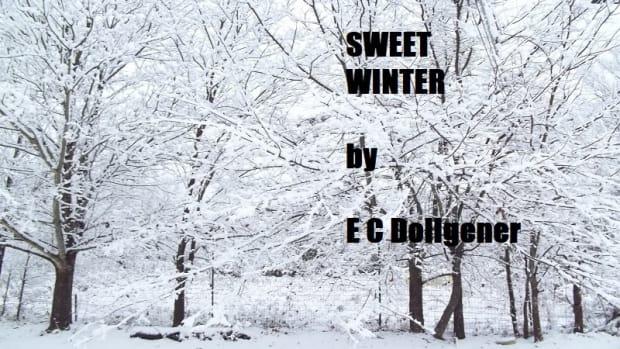 sweet-winter