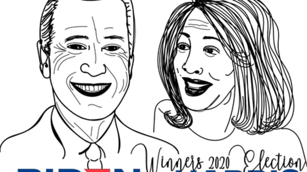 joe-biden-did-not-win-the-american-presidential-election