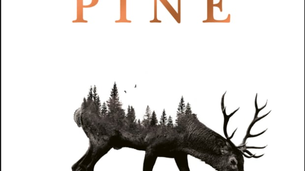a-book-review-of-pine-by-francine-toon