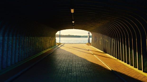 vivarium-tunnel