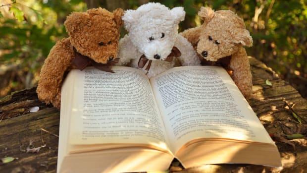 teddy-bear-taddy-bear