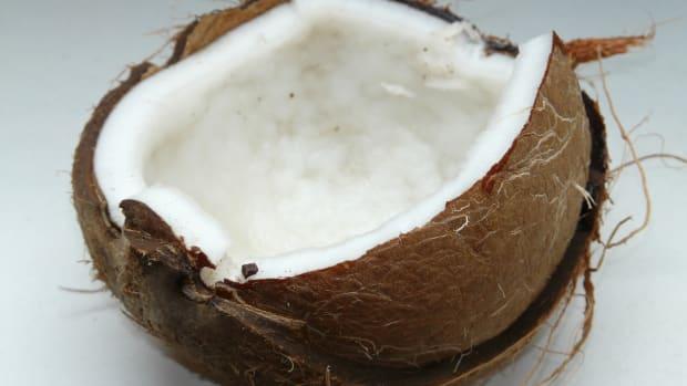 exploring-coconut