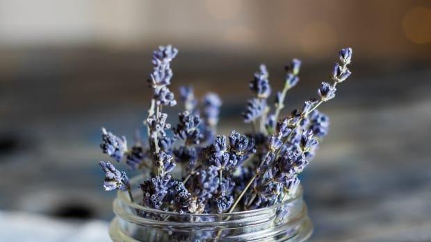 using-lavender-in-dreamwork