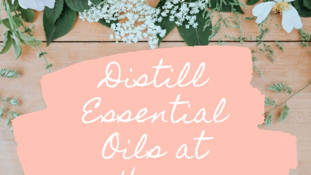 how-to-distill-essential-oils