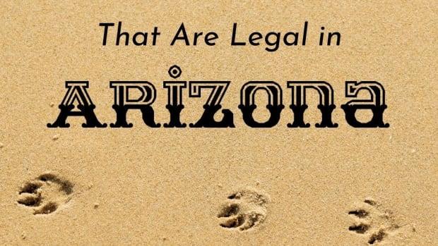 exotic-pets-legal-in-arizona