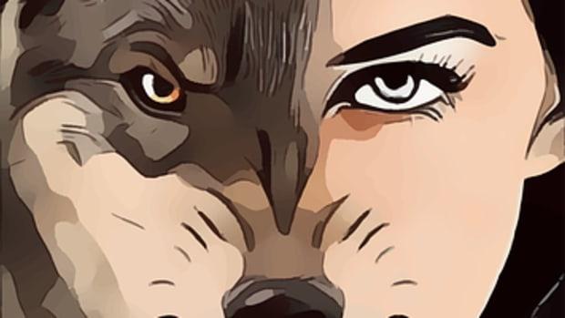 she-wolf-fooled-ya-song-lyrics