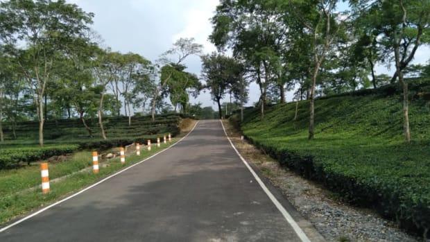 jalpaiguri-the-capital-of-the-green-colony-tea-garden-and-river-trisrota