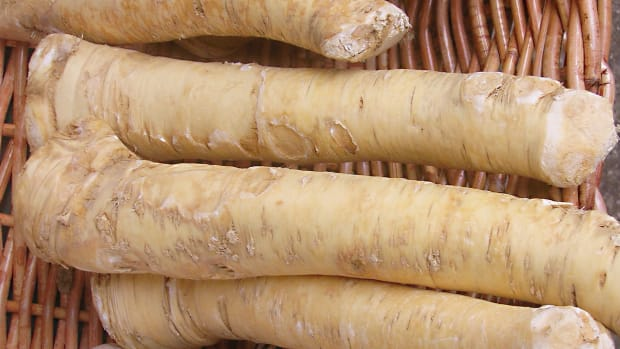 horseradish-root-and-sauce-a-tasty-condiment-for-health
