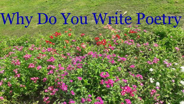 11-thoughts-on-why-to-write-poetry