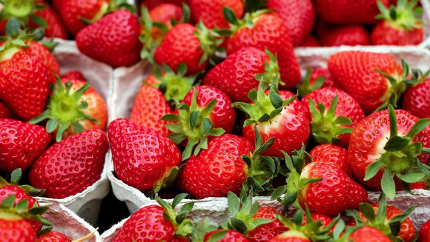 how-did-the-strawberries-arrive-on-your-plates