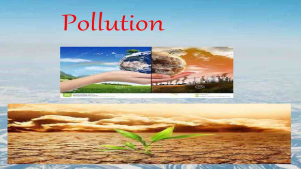water-pollution-and-its-effects