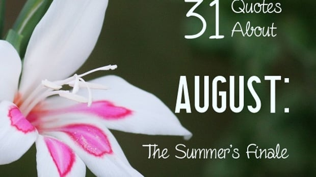 31-quotes-about-august-the-summer-finale