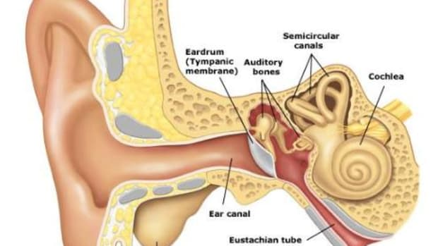 ear-wax-removal-the-safe-way