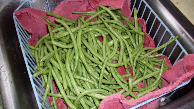 how-to-make-canned-pickled-green-beans-aka-dilly-beans