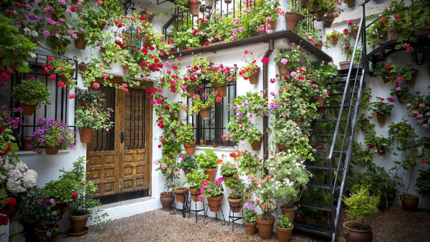 5-best-one-day-trips-from-granada