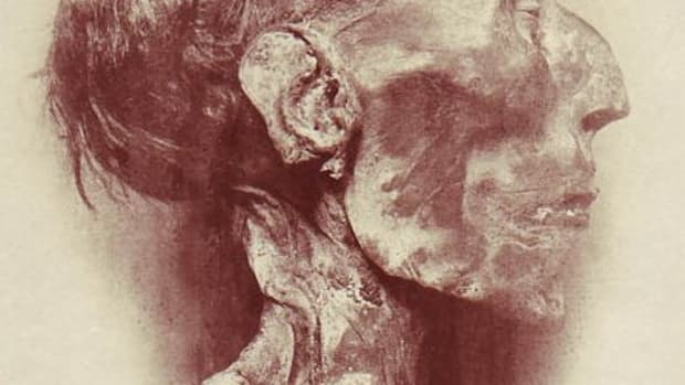 The mummified head of Ramesses II. Photo courtesy of wikimedia.org.