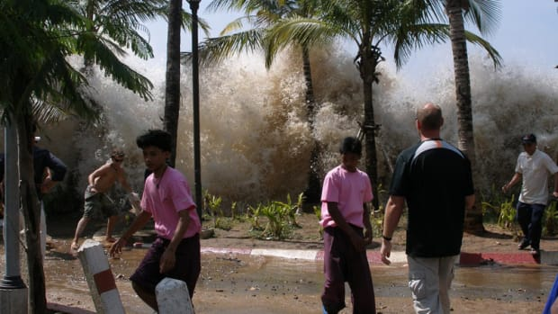 Panic: People flee as a Tsunami wave crashes into trees in Indonesia on Boxing Day, December 26, 2004