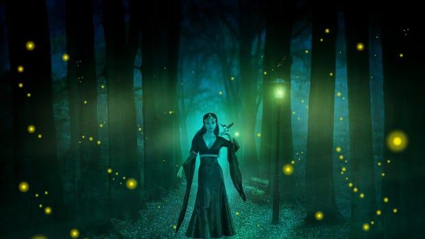 the-queen-of-night