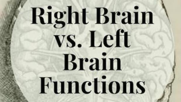 right-brain-vs-left-brain-functions