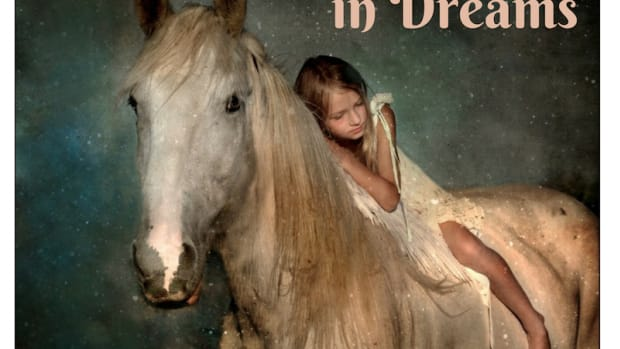 what-it-means-to-dream-of-horses