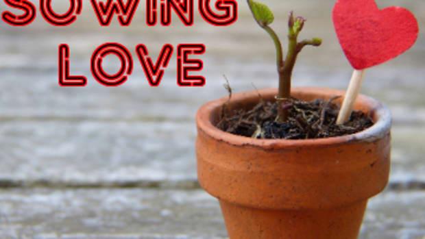 poem-sowing-love
