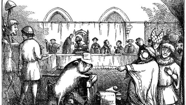 medieval-animal-court-trials