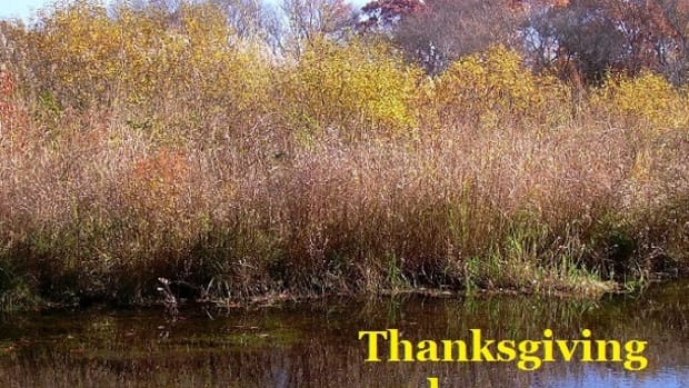 thanksgiving-and-giving-thanks