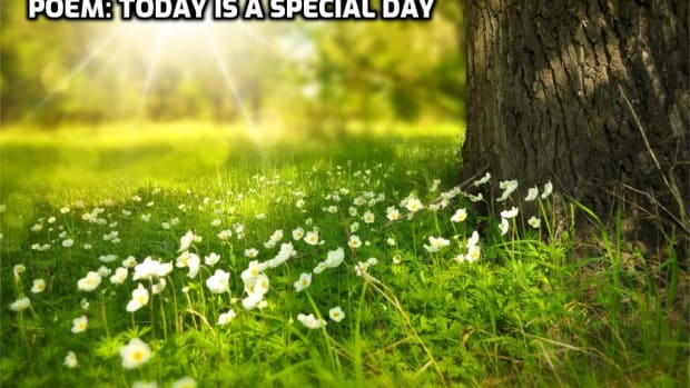 poem-today-is-a-special-day-response-to-word-prompt-today-by-brenda-arledge
