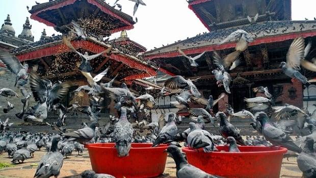the-hindu-country-nepal